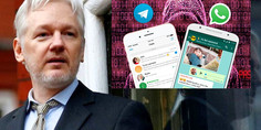 Relacionada wikileaks hack whatsapp