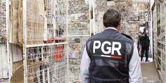Relacionada en diez an os van 36 agentes desparecidos de la pgr