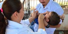 Relacionada vacunaimss1