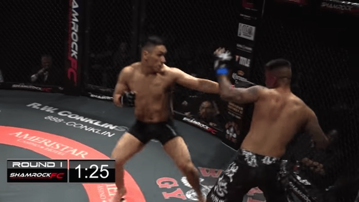 Video  doble nocaut en pelea de artes marciales mixtas