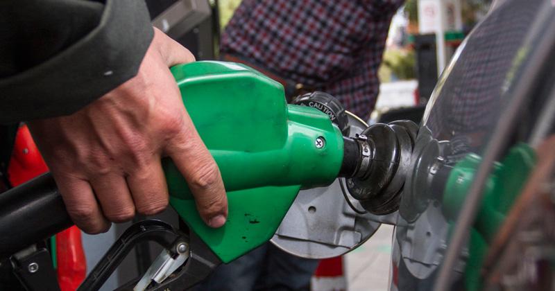 El filtro de combustible para la gasolina el volkswagen