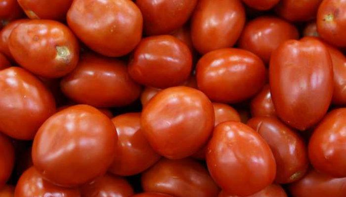 Cienti ficos del ipn desarrollaron biopla stico con ca scara de tomate