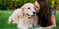 Relacionada woman kissing dog