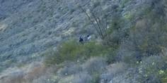 Relacionada rescate cerro santa rosalia