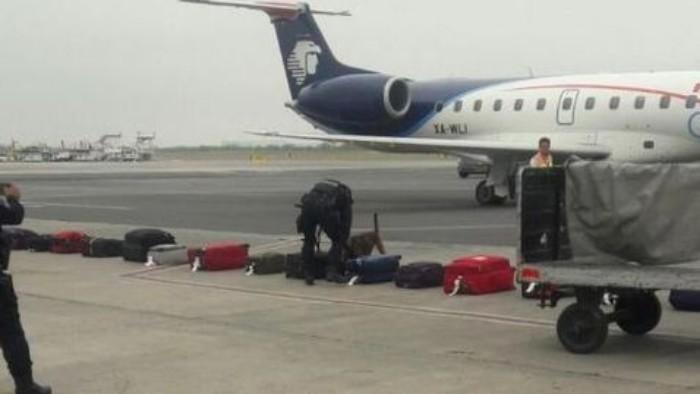 PF atiende supuesta amenaza de bomba en Aeropuerto de Monterrey
