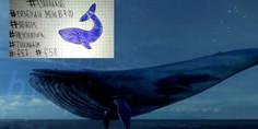Relacionada ballena azul