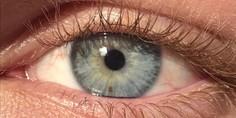 Relacionada ojo retina