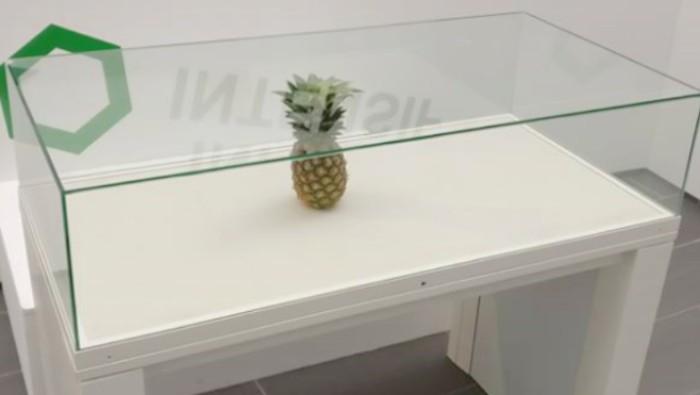 Confunden una piña en una exposición con una obra de arte