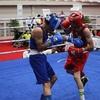 Thumb box olimpiada