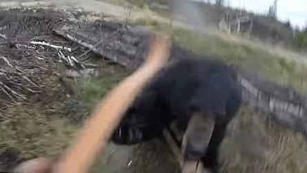 Cazador graba el escalofriante momento en que fue atacado por un oso