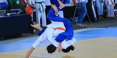 Relacionada competencia judo