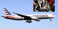 Relacionada american airlines