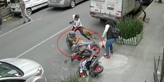 Relacionada pitbull ataca a sujeto y su perro poodle cdmx