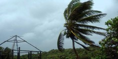 Relacionada franklin tormenta