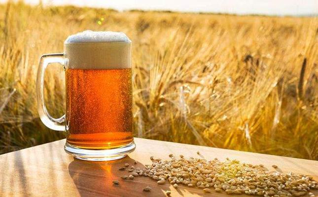 Cerveza cebada  1