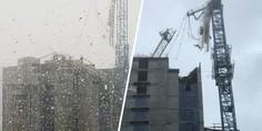 Relacionada miami dt crane