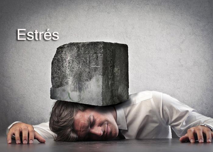 Tecnicas para disfrutar de tu vida cuando est s estresado1