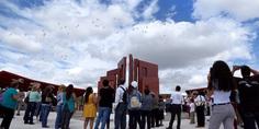 Relacionada memorial aeroshow