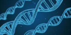 Relacionada diferencias entre genes y adn 727x409