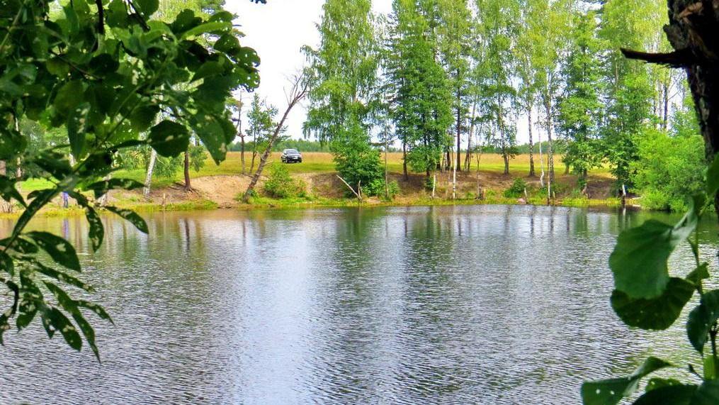 Como por arte de magia, desaparece un lago y todos sus peces