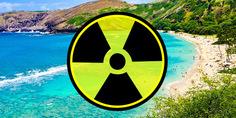 Relacionada destinationgalleries.hawaii.snorkelingbay900x400
