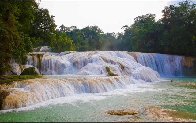 Cauce de Agua Azul se recuperó: Semarnat