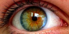 Relacionada ojo barcelona