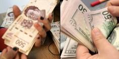 Relacionada dolares pesos