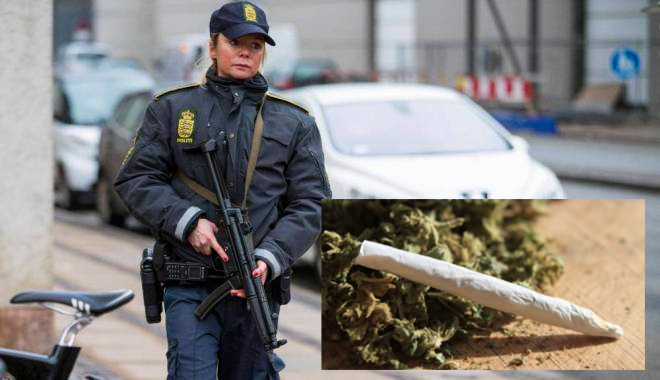 Subió a patrulla por error: lo detienen con mil cigarros de marihuana