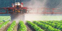 Relacionada agro industria