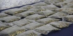 Relacionada agentes municipales detienen a vendedor de marihuana en la colonia hermenegildo galeana es menor de edad