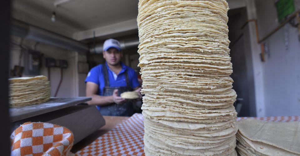 No puede aumentar precio de la tortilla por capricho: Profeco