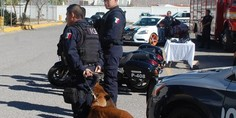 Relacionada policia chih