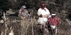 Relacionada tarahumaras corto