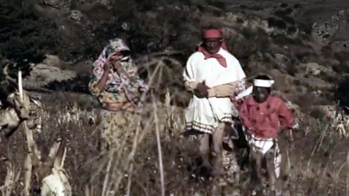 Tarahumaras corto