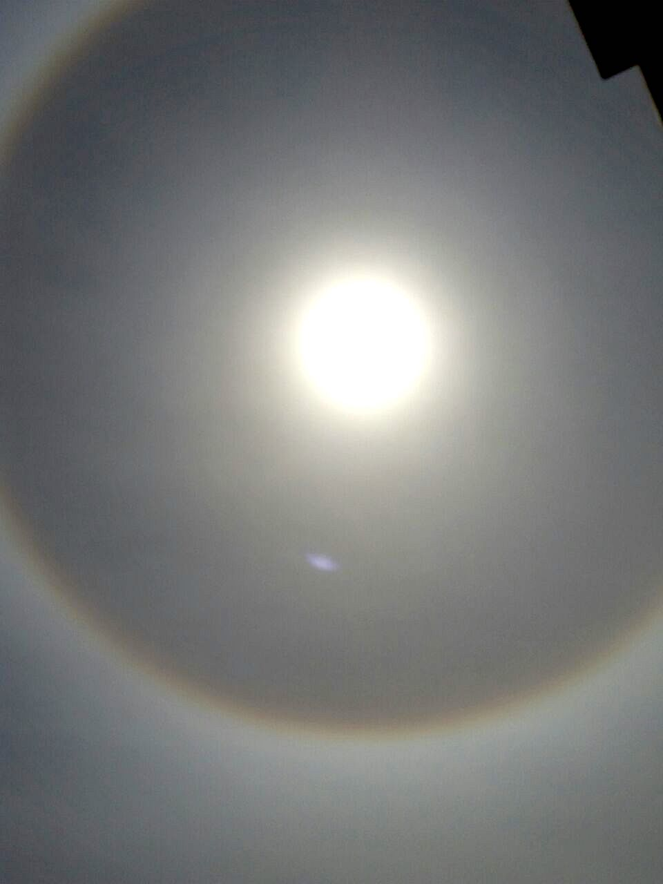 Halo ciudad juarez