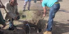 Relacionada parques y jardines  reparacio n fuentes 2