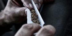 Relacionada quit smoking marijuana 1024x506