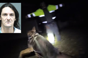 Slider muerte a perro