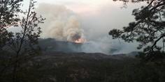 Relacionada mega incendio madera el largo