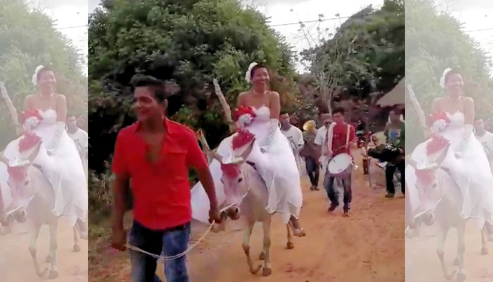 Esta novia llega a su boda... ¡montada en un burro!