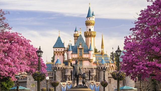Disneyland gallery00