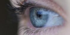 Relacionada ojo