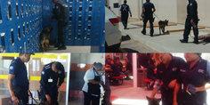 Relacionada realiza la polici a municipal operativo en la empresa lear planta torres