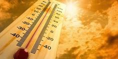Relacionada calor extremo
