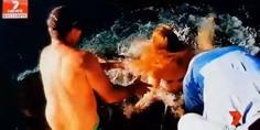 Relacionada melissa brunning atacada por tiburaon australia 1530450576752