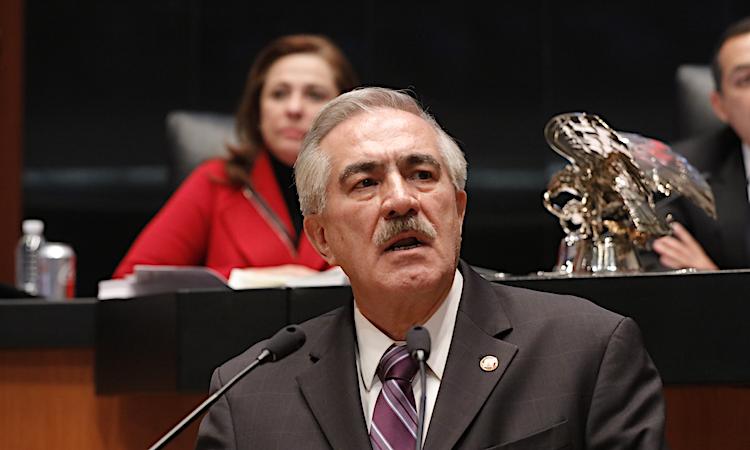 Martinez patricio senado tribuna