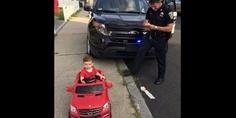 Relacionada grayson licencia de conducir