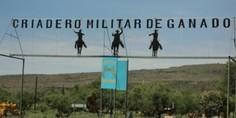Relacionada criadero militar pozos
