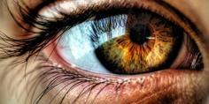 Relacionada 153241 optogenetica puede devolver vista personas ciegas